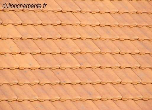 Toiture tuile mcanique gallery of couverture fenetre de toit de la marque velux sur tuile canal - Tuile mecanique prix ...